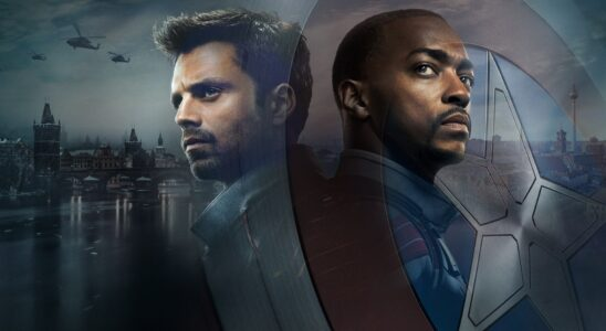The Falcon and the Winter Soldier Hero
